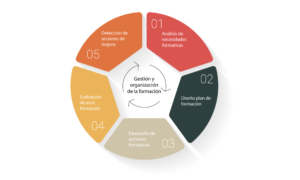 Ega grafico gestión y organización de la formación